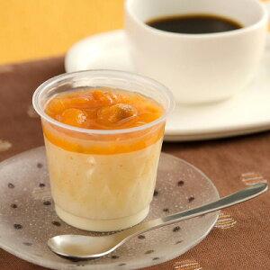 贅沢な甘さでヘルシーな欲張りスイーツ〈 豆乳生プリン×6個セット 〉 株式会社LAPIS-LAZULI・静岡県