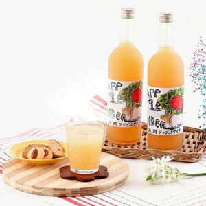 浪岡アップルサイダー ホットアップルサイダー りんごジュース 2本セット りんご100%果汁 ギフト 伝統 パサパ PaSaPa青森 青森県