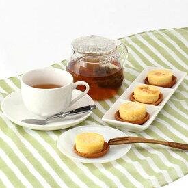 洋菓子 北海道 お取り寄せスイーツ sweets チーズケーキ 8個×2箱 2種 濃厚 本場