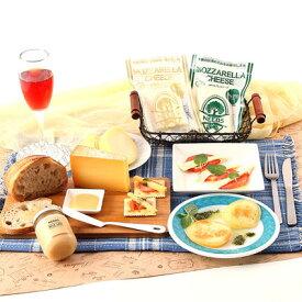 送料無料 北海道 お取り寄せ チーズ 乳製品 バラエティセット 5種 十勝