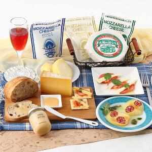 北海道 お取り寄せ チーズ 乳製品 バラエティセット 9種 十勝