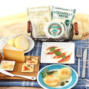 北海道 お取り寄せ チーズ NEEDSバラエティセット6