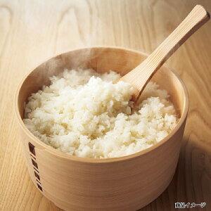 秋田県桧山産 特別栽培米自然乾燥の桧山こまち 〔あきたこまち、5×4〕
