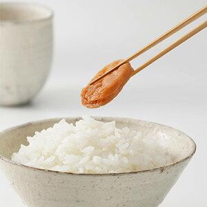 梅干し 種ぬき 紀州南高梅 梅干 紀州産 和歌山県産 うめぼし うす塩味
