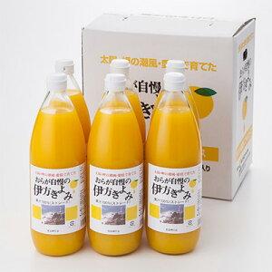 フルーツジュース おらが自慢の伊方きよみジュース 6本 セット 1000ml 清見オレンジ 清見タンゴール きよみオレンジ ジュース 果汁 100% オレンジジュース みかん 愛媛 国産 無添加 クリエイト