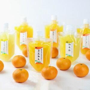 お取り寄せ ちゅうちゅうゼリー 旬の柑橘 気まぐれセット 10個