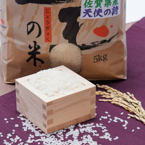 2017 佐賀県産 ブランド米 天使の詩 産地直送 精白米 5kg