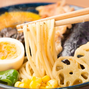 ラーメン 札幌スープカリーラーメン 4食 セット 麺 カレーラーメン グルメ 生麺 北海道 カレー味 ポスト投函便