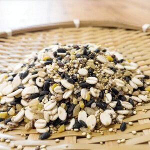 スーパーフードナイン 12袋 雑穀 スーパーフード 胚芽押麦 黒米 キヌア チアシード 発芽玄米 もち麦 アマランサス ヘンプシード 大豆 食物繊維 栄養豊富 雑穀 ヘルシー ポスト投函便