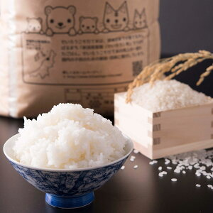 新潟県産コシヒカリ 農家直送 コシヒカリ 米 10kg お米 新潟 せいろうこそだて米 精白米 美味しいお米 金助農業株式会社 新潟県