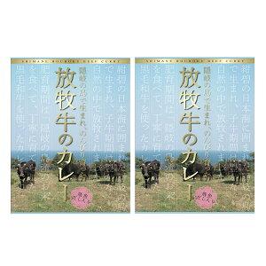 放牧牛カレー 2個 200g 島根県名物 隠岐 ご当地カレー レトルトカレー あごだし 和牛 ビーフカレー 惣菜 送料無料 ポスト投函便