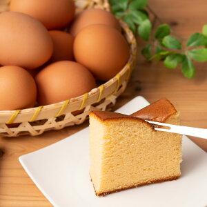 黒富士農場 人気No.1バウムクーヘン2個と森のカステラハーフ 2個 セット 山梨県 洋菓子 ご当地スイーツ 詰め合わせ お菓子