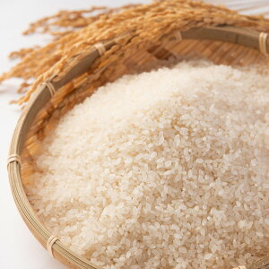 特別栽培米 あきたこまち 精米 5kg お米 真空パック 米 ごはん 秋田県産 佐々木米穀店