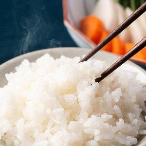 山形県南陽産 特別栽培米 はえぬき 5kg 米 お米 産地直送 山形 白米 しまさき農園