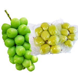 フローズンシャイン 5袋 山梨県産 シャインマスカット 冷凍 ぶどう フルーツ 無添加 マスカット 365grape まるしょう農園