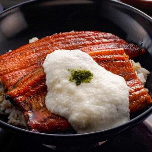 浅草むぎとろ うなとろセット 2人前 鰻 国産 惣菜 うなぎ 蒲焼き 愛知県産 とろろ うなとろ 栄養満点 夏バテ スタミナ うな重 とろろごはん 東京