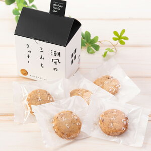 潮風のこみちクッキー 家形 6個セット 6箱 詰合せ クッキー 洋菓子 焼菓子 国産小麦使用 スイーツ デザート 焼き菓子 おやつ ご当地スイーツ お取り寄せスイーツ 神奈川 鎌倉ツリープ