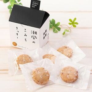 潮風のこみちクッキー 家型箱 3個セット 3箱 詰合せ クッキー 洋菓子 焼菓子 国産小麦使用 スイーツ デザート 焼き菓子 おやつ ご当地スイーツ お取り寄せスイーツ 神奈川 鎌倉ツリープ