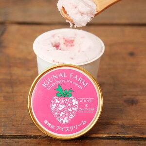 完熟いちごアイスクリーム 6個 セット アイス 洋菓子 いちご アイスクリーム スイーツ ストロベリー デザート イチゴ 苺 冷たいスイーツ ご当地スイーツ お取り寄せスイーツ 宮城 イグナル