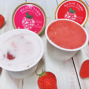 完熟いちごアイス シャーベット 詰め合わせ 2種 詰合せ アイス 洋菓子 いちご アイスクリーム スイーツ ストロベリー デザート イチゴ 苺 冷たいスイーツ ご当地スイーツ お取り寄せスイー