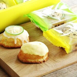レモンケーキ 2種 8個入 2箱 セット 詰合せ 焼き菓子 洋菓子 レモン 青いレモンケーキ スイーツ 柑橘 瀬戸内レモン デザート おやつ 媛っ娘みかん卵 みかんはちみつ ご当地スイーツ お取り寄