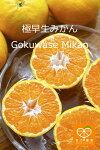 gokuwase