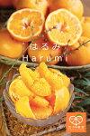 harumi035