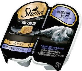 シーバ 一皿の贅沢 しっとりテリーヌ 厳選お魚ミックス(サーモン・シーフード入り) 75g