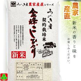 金峰米 農家産直 契約栽培米 新米 鹿児島産 金峰こしひかり  5kg 南さつま市