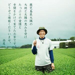 かのや深蒸し茶茶楽三味(ちゃらくさんみ)100g農薬不使用栽培茶ゆたかみどり大井早生ブレンド