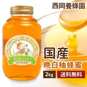 国産 純粋 晩白柚蜂蜜 2kg 送料無料 はちみつ 西岡養蜂園 にしおか 非加熱