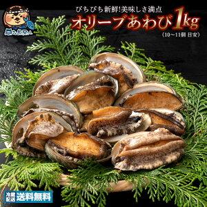 あわび オリーブあわび 1kg (10〜11個 目安) (殻入り) 送料無料 冷蔵便 [ あわび アワビ 鮑 海鮮 貝 鉄板焼き バーベキュー ステーキに 新鮮 ]