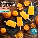 ギフト アイス 愛媛県産 みかん 100% 太陽のアイス 冷やしみかん 合計20本 セット [ 無添加 砂糖不使用 アイスキャン…