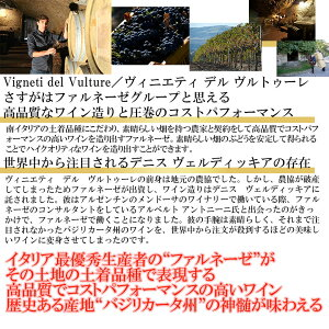ピポリ・アリアーニコ・デル・ヴルトゥーレ【ヴィンテージは順次変わります】赤ワインイタリアバジリカータフルボディ木樽熟成ギフトプレゼント