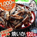 【 大袋ファミリーサイズ 】焼きいか 120g で1000円!焼いか スルメ おつまみ 珍味【コンビニ受取対応商品】