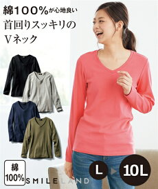 Tシャツ カットソー 大きいサイズ レディース 綿100% Vネック 年中 オフホワイト〜杢グレー L〜10L ニッセン