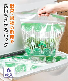 野菜保存 収納 袋オーラ パック 6枚入 キッチン ニッセン
