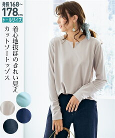 Tシャツ カットソー トールサイズ レディース きれいめ キーネック トップス ネイビー/ミントグリーン/ライトグレー/黒 LL/3L ニッセン