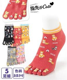 靴下(ソックス) (23.0〜25.0cm) 色柄 おまかせ 指先までかわいい 動物柄 5本指 ショートソックス 5足組 ニッセン nissen 靴下 福袋 セット
