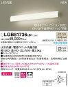 (ライコン別売)LEDブラケットLGB81736LB1(可動)(温白色)(電気工事必要)Panasonicパナソニック