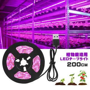植物育成ライト LED植物用 LEDテープライト 植物成長促進用ランプ LEDテープライト防水 USB対応 2m SMD3528 5V LEDテープ 日照不足解消 肉植物育成 水耕栽培ランプ 家庭菜園 室内園芸 水草栽培 野菜