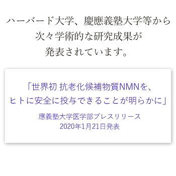 img_08.jpg