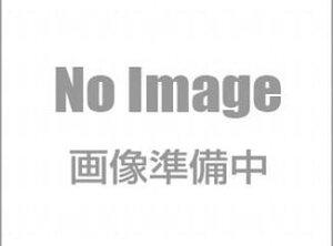 昭和電工 ARプライマー 18kg/缶