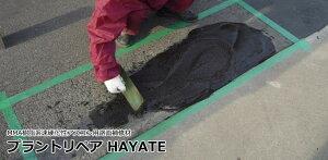 プラントリペア HAYATE#アスコングレー 20kg/ケース ABC商会
