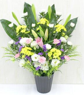 Nitsuen Flower Rakuten First Place First Bon Service For The