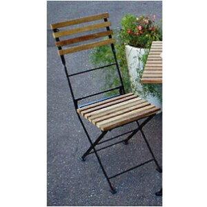 ガーデンチェアー:折り畳みアイアン・チークチェアー(2脚セット)[F-260]【あす楽対応不可】【全品送料無料】