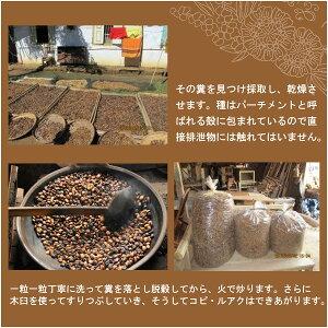 レギュラーコーヒー豆コピ・ルアク50g