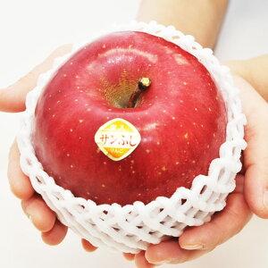 福島県産 サンふじ りんご 特選大玉 11玉入 1箱 ギフト 蜜入りんご 林檎 リンゴ 福島のリンゴ *産地直送致します。クリスマス ギフト お歳暮