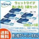 送料無料 排出ケア テーナ TENAウェットワイプ 使い捨てペーパータオル あいあむ5袋セット TENAスキンケアシリーズ 清拭用 おしりふき 介護用