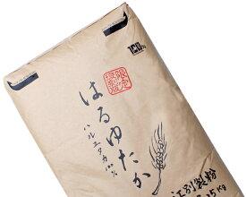 はるゆたか100%品 業務用 25Kg /パン用小麦粉 【江別製粉 北海道産 ハルユタカ小麦100% 強力粉】